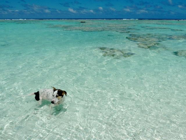 Le lagon de Maupiti.