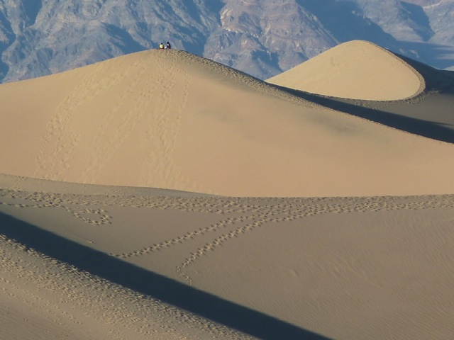 Death Valley. Mosquite flat sand dunes.