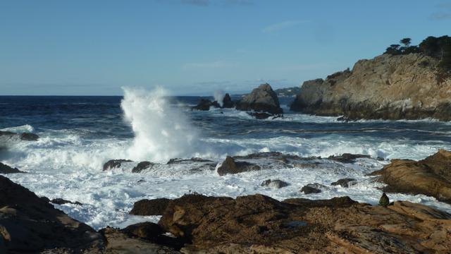Point Lobos State reserve, près de Carmel.