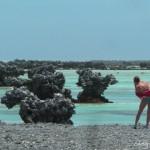 Rangiroa : Île aux récifs