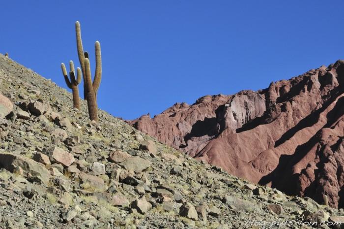 Valle de Arcoiris, désert d'Atacama.