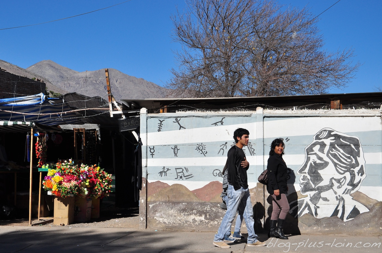 A Vicuña, vallée de l'Elqui. Chili.