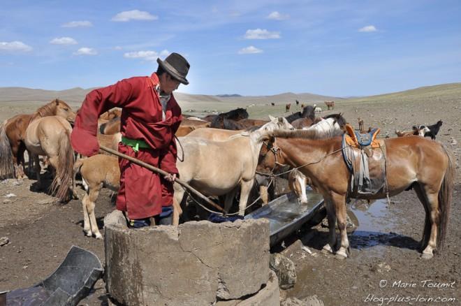 Mongolie: un homme au puits pour abreuver ses cheveux.