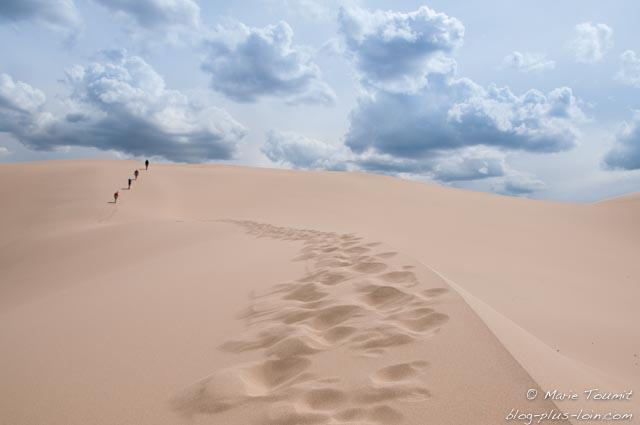 Dunes dans le désert de Gobi en Mongolie